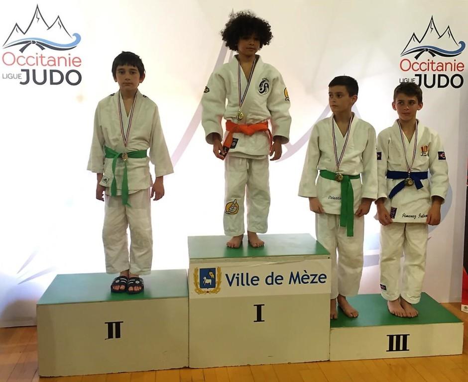 Calendrier Judo Occitanie.Criterium Regional D Occitanie Benjamins Meze 13 Avril 2019